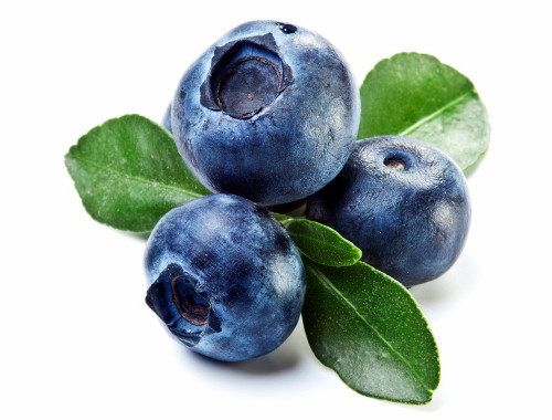 blueberries-avatar